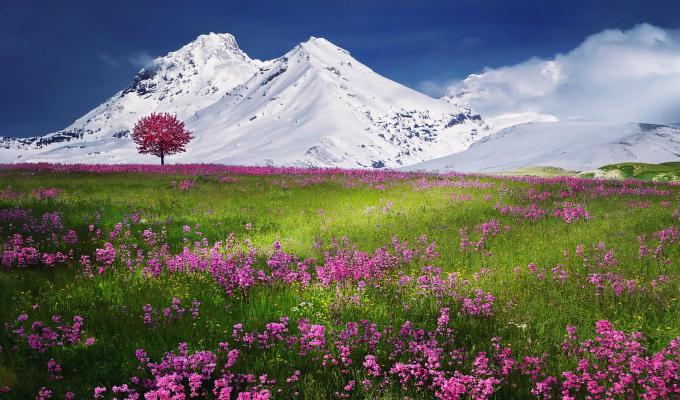 Amazing Landscape, Snow Mountain Image