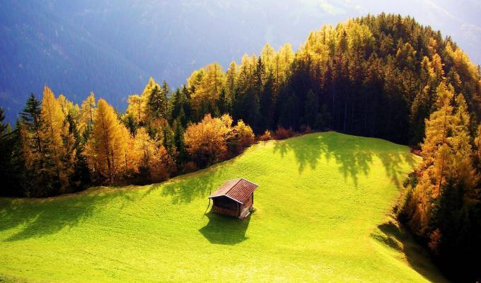 Amazingly Beautiful Green Landscape Image