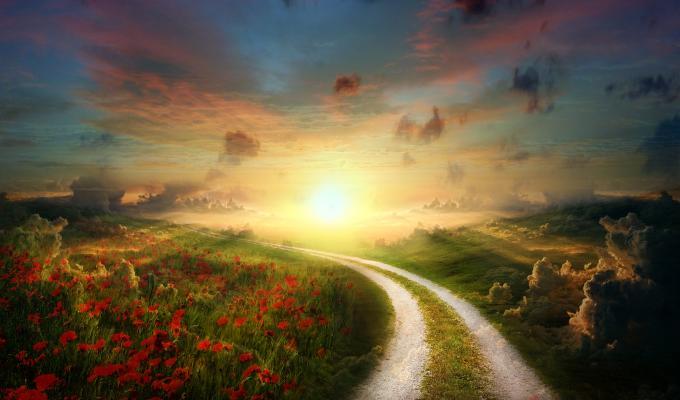 Beautiful Sunny Path Landscape Image