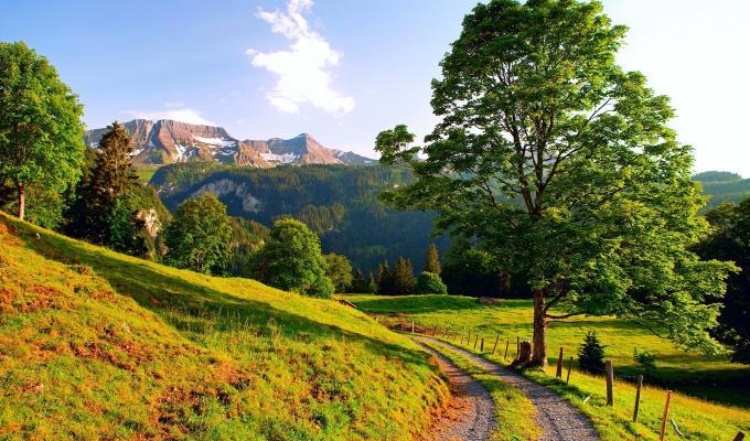 Beautiful Sunshine, Trees,  Mountain Image