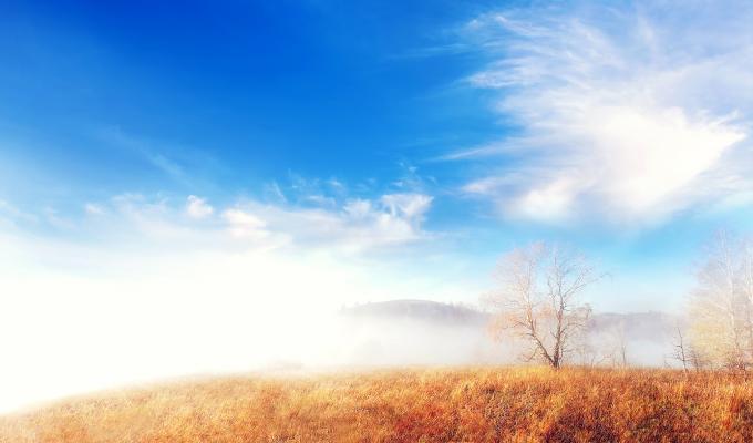 Foggy View of Landscape Image