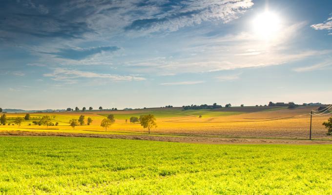 Stunning Spring Sunny Landscape Image