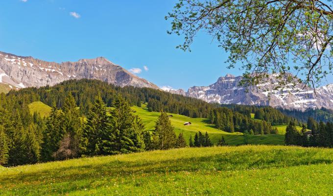 Stunning Switzerland, Green Mountain Image