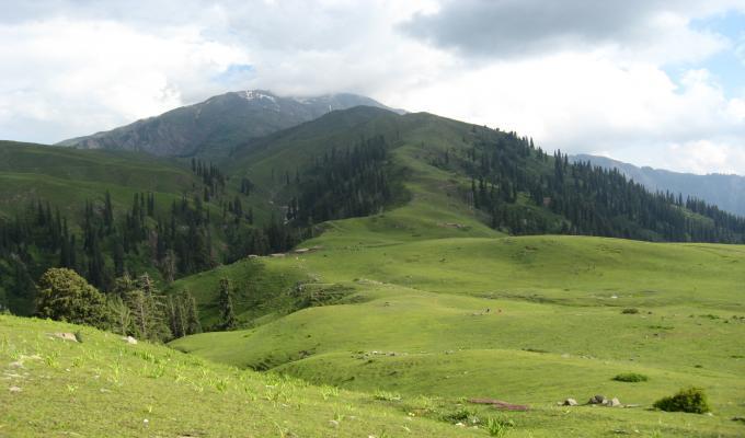 Summer View of Makra Mountain Wallpaper